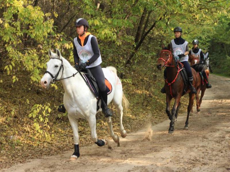 Fekete tizenévesek lovaglás